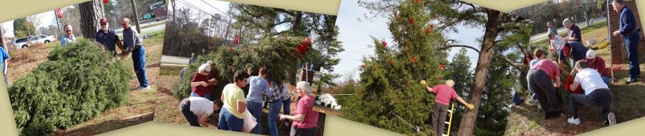 20111126-GMPC-ChristmasTreeOutFront1-960x198-ForWeb.jpg